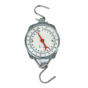 22lb HANGING SCALE RS-22
